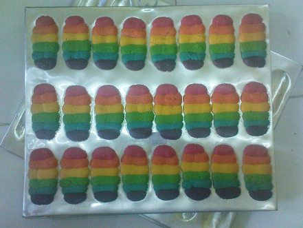 rainbow cat's tounge cookies